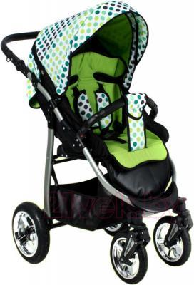 Детская прогулочная коляска Adbor Mio Special Edition (L03) - общий вид