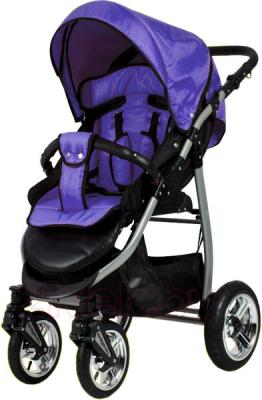 Детская прогулочная коляска Adbor Mio Standart Edition (112) - общий вид