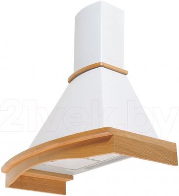 Вытяжка купольная Pyramida R 90 White/U - общий вид