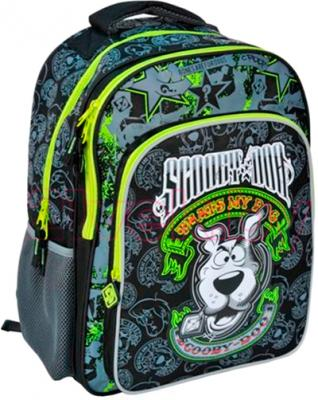 Школьный рюкзак Paso SDG-850 - общий вид