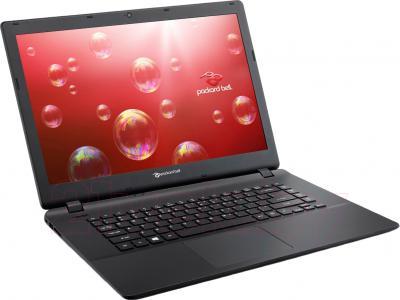 Ноутбук Packard Bell ENTF71BM-C162 (NX.C3SEU.004) - общий вид