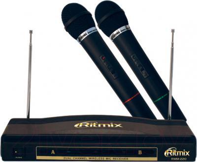 Микрофон Ritmix RWM-220 - общий вид