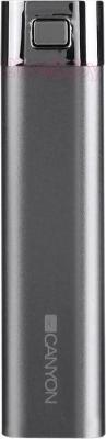 Портативное зарядное устройство Canyon CNE-CPB26GR - общий вид