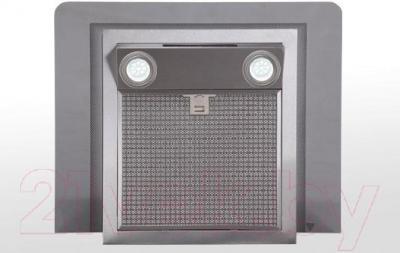 Вытяжка декоративная Zorg Technology Viva Glass (60, нержавеющая сталь) - вид снизу