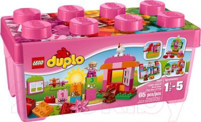 Конструктор Lego Duplo Лучшие друзья: курочка и кролик (10571) - упаковка