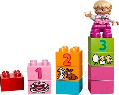 Конструктор Lego Duplo Лучшие друзья: курочка и кролик (10571) - общий вид