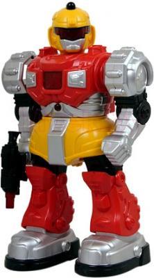 Робот Jia Qi X-робот (TT2010) - общий вид