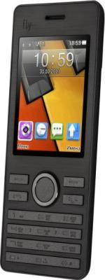 Мобильный телефон Fly DS131 (Black) - общий вид
