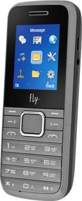 Мобильный телефон Fly TS91 (Silver) - общий вид