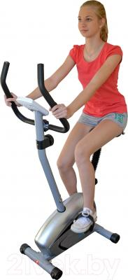 Велотренажер Sundays Fitness K8501 - общий вид