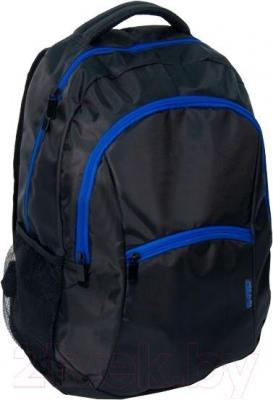 Рюкзак городской Paso 14-A040N - общий вид