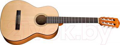 Акустическая гитара Fender ESC-105 - общий вид