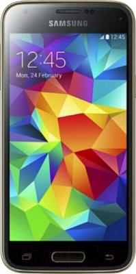 Смартфон Samsung Galaxy S5 mini / G800H (золотой) - общий вид