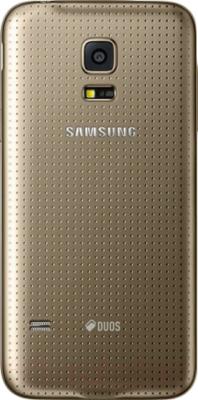 Смартфон Samsung Galaxy S5 mini / G800H (золотой) - вид сзади