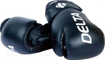 Боксерские перчатки Delta TT-2017-14 - общий вид
