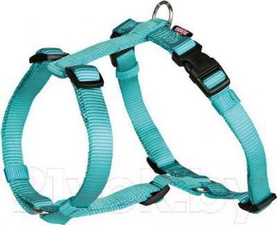 Шлея Trixie Premium H-harness 20340 (М-L, аквамарин) - общий вид