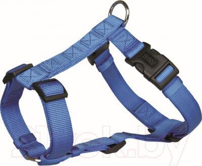 Шлея Trixie Premium H-harness 20342 (М-L, синий) - общий вид