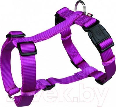 Шлея Trixie Premium H-harness 20348 (М-L, фиолетовый) - общий вид