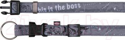 Ошейник Trixie Modern Art Collar This is the Boss 15751 (L-XL, Gray) - общий вид