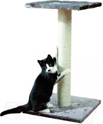 Когтеточка Trixie Espejo 43342 (серый) - общий вид