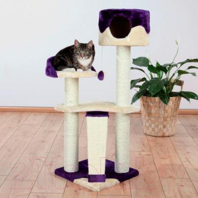 Комплекс для кошек Trixie Carla 44831 (бежево-фиолетовый) - общий вид
