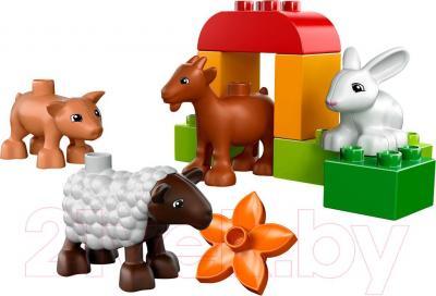 Конструктор Lego Duplo Животные на ферме (10522) - общий вид