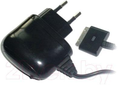 Сетевое зарядное устройство Ritmix RM-017 NP - общий вид