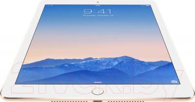 Планшет Apple iPad Air 2 128GB 4G / MH1G2TU/A (золотой) - вид снизу