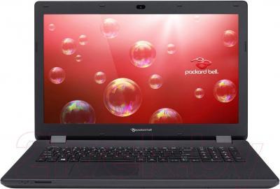 Ноутбук Packard Bell ENLG71BM-P7UA (NX.C3WEU.001) - общий вид