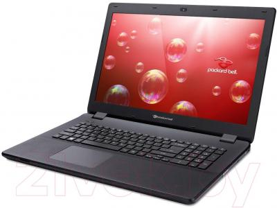 Ноутбук Packard Bell ENLG71BM-P7UA (NX.C3WEU.001) - вполоборота
