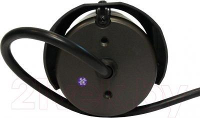 IP-камера AVTech AVM359 - вид сзади
