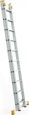 Лестница-стремянка iTOSS Forte 8508 - общий вид