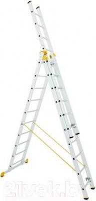 Лестница-стремянка iTOSS Forte 8608 - общий вид