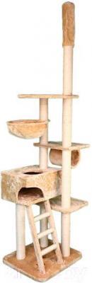 Комплекс для кошек Trixie Zaragoza 43931 (бежевый) - общий вид
