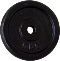 Диск для штанги Sundays Fitness WS4016 (5kg) -