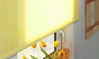 Рулонная штора Gardinia Лайт 302 (90x230) - в интерьере