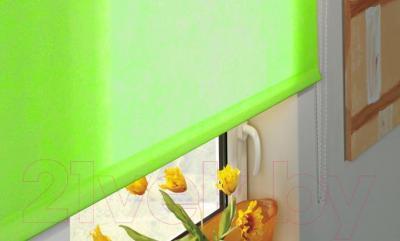 Рулонная штора Gardinia Лайт 307 (90x230) - в интерьере