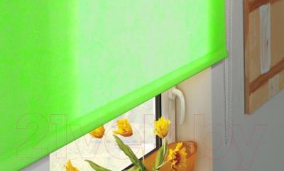 Рулонная штора Gardinia Лайт 308 (60x170) - в интерьере