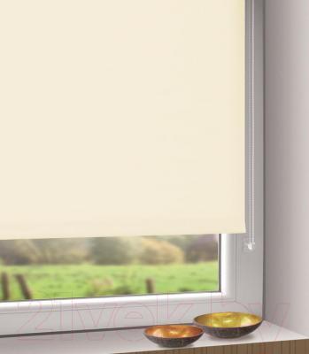 Рулонная штора Gardinia Мини 300 (80x150) - в интерьере