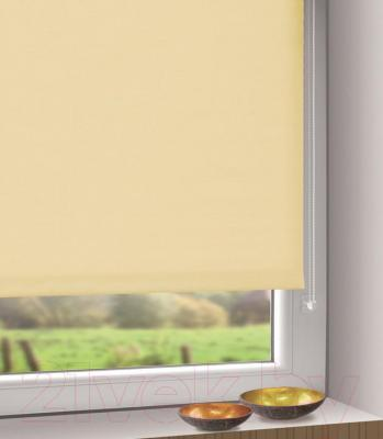 Рулонная штора Gardinia Мини 302 (97x150) - в интерьере