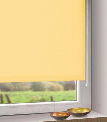 Рулонная штора Gardinia Мини 303 (42.5x150) - в интерьере