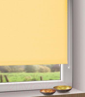 Рулонная штора Gardinia Мини 303 (57x150) - в интерьере