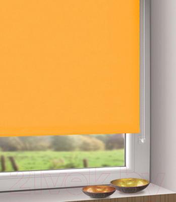 Рулонная штора Gardinia Мини 305 (57x150) - в интерьере