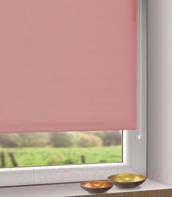 Рулонная штора Gardinia Мини 312 (68x215) - в интерьере