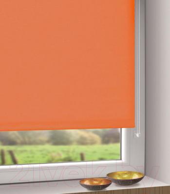 Рулонная штора Gardinia Мини 314 (80x150) - в интерьере