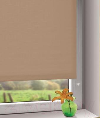 Рулонная штора Gardinia Мини 501 (50x150) - в интерьере