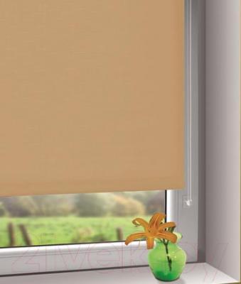 Рулонная штора Gardinia Мини 502 (80x150) - в интерьере