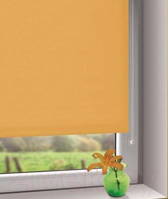 Рулонная штора Gardinia Мини 503 (57x150) - в интерьере