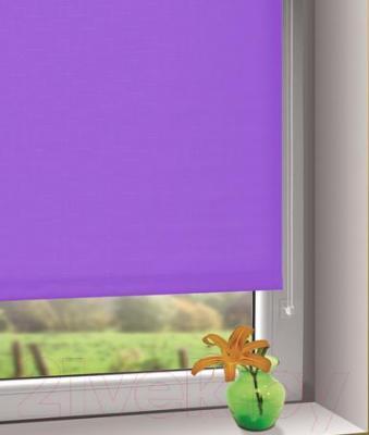 Рулонная штора Gardinia Мини 505 (57x150) - в интерьере