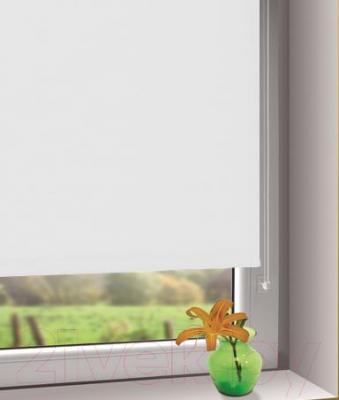 Рулонная штора Gardinia Мини 508 (57x150) - в интерьере